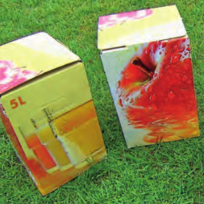 Artland Mosterei - Saft Bag in Box 5 Liter